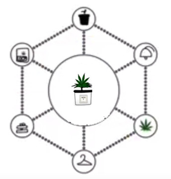 Cannabis Tracking and Compliance Cycle – 344×360