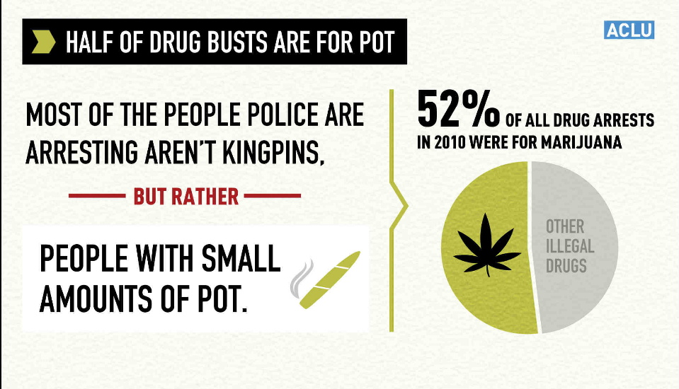 aclu-half-of-drug-busts-are-for-pot